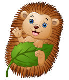 Cartoon hedgehog with holding leaf and waving hand Royalty Free Stock Images
