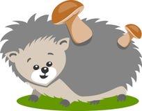 Cartoon Hedgehog On White stock photo