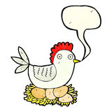 Cartoon hen on eggs with speech bubble Stock Image