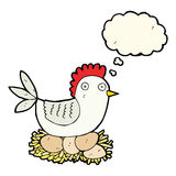 Cartoon hen on eggs with thought bubble Royalty Free Stock Photography