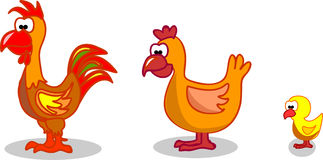 Cartoon hen rooster chicken,vector Stock Photo