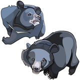 Cartoon Himalayan black bears Stock Image