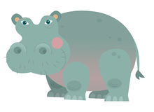 Cartoon hippo - illustration for the children Royalty Free Stock Images