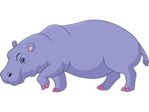 Cartoon hippo isolated on white background. Illustration of Cartoon hippo isolated on white background Royalty Free Stock Photography
