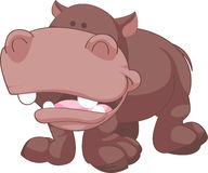Cartoon Hippopotamus Illustration Stock Photos