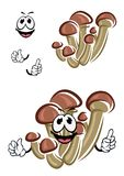 Cartoon honey agaric mushrooms character Stock Photos