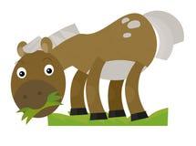 Cartoon horse Stock Photography