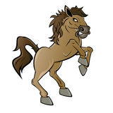 Cartoon horse or stallion. Illustration of cartoon horse or stallion with front legs in air, white studio background Royalty Free Stock Photos