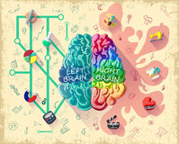 Cartoon Human Brain Diagram Concept. With left logic and right creative hemispheres and colorful icons vector illustration vector illustration