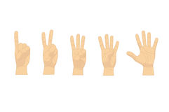 Cartoon Human Hand Showing Numbers Set Row. Vector Royalty Free Stock Images