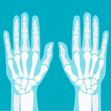 Cartoon Human Joints Hands Set. Vector Royalty Free Stock Photography