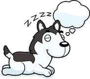 Cartoon Husky Dreaming Royalty Free Stock Photo