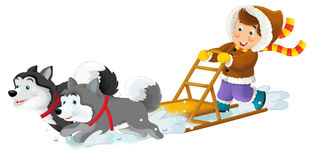 Cartoon husky race. Beautiful and colorful illustration for the children royalty free illustration