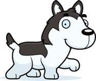 Cartoon Husky Walking Royalty Free Stock Photography