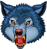 Cartoon illustration of Angry wolf cartoon character Royalty Free Stock Photo
