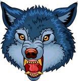 Cartoon illustration of Angry wolf cartoon character Royalty Free Stock Photo