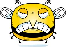 Angry Little Bee. A cartoon illustration of a bee looking angry royalty free illustration