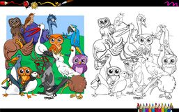 Bird characters group coloring book Royalty Free Stock Image