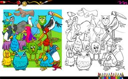 Birds characters group coloring book Stock Images