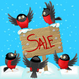 Cartoon illustration with bullfinches and wooden banner, concept of holiday sales Stock Photo