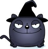 Cartoon Sly Witch Cat. A cartoon illustration of a cat in a witch hat with a sly expression Stock Photography
