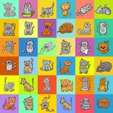 Pattern design with cats cartoon characters. Cartoon Illustration of Cats and Kittens Characters Pattern for Decorative Paper Graphic Design Royalty Free Stock Photography