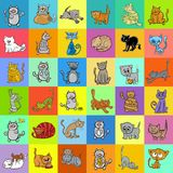 Pattern design with cartoon cat characters. Cartoon Illustration of Cats Pet Characters Pattern or Decorative Paper Graphic Design Stock Photos