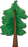 Cartoon illustration of conifer tree Royalty Free Stock Image