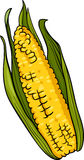 Corn on the cob cartoon illustration Royalty Free Stock Photo