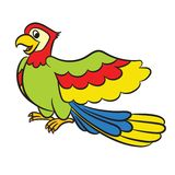 Cartoon illustration of cute parrot Royalty Free Stock Images