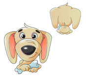 Cartoon illustration of a dog Royalty Free Stock Images