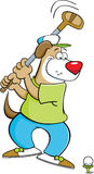 Cartoon dog swinging a golf club Royalty Free Stock Photography