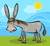 Cartoon illustration of donkey Royalty Free Stock Image