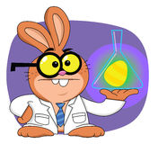 Easter bunny scientist Royalty Free Stock Photography
