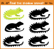 Cartoon  illustration of education will find appropriate shadow silhouette animal iguana. Matching game for children of pres Stock Image
