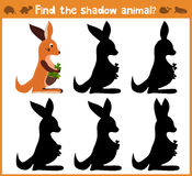 Cartoon  illustration of education will find appropriate shadow silhouette animal kangaroo. Royalty Free Stock Photos