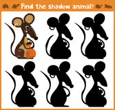 Cartoon  illustration of education will find appropriate shadow silhouette animal mouse. Stock Photos