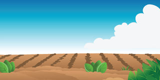 Farm field. Cartoon illustration of a farm field stock illustration