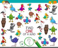 Find one of a kind with birds characters. Cartoon Illustration of Find One of a Kind Picture Educational Activity Game for Children with Birds Characters Stock Photo