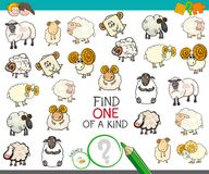 Find one of a kind with sheep characters. Cartoon Illustration of Find One of a Kind Picture Educational Activity Game for Children with Sheep Characters Royalty Free Stock Image