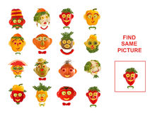 Cartoon  Illustration of Finding the Same Picture.  Educational Stock Photos