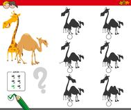 Shadows activity game with giraffe and camel. Cartoon Illustration of Finding the Shadow without Differences Educational Activity for Children with Giraffe and Royalty Free Stock Photos