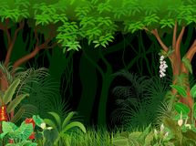 Cartoon illustration of forest background Royalty Free Stock Photos