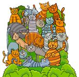 Cat characters group cartoon illustration. Cartoon Illustration of Funny Cats and Kittens Animal Characters Group Royalty Free Stock Image