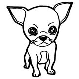 Cartoon Illustration of Funny Dog for Coloring Book Stock Photography