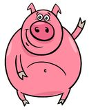 Pig or porker character cartoon illustration. Cartoon Illustration of Funny Pig or Porker Farm Animal Character Royalty Free Stock Image