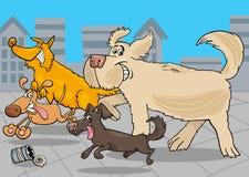 Cartoon running dogs animal characters Stock Image