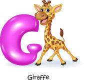 Cartoon illustration of G letter for Giraffe Royalty Free Stock Photography