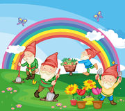 Cartoon illustration of gnomes Stock Photos