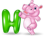 Cartoon illustration of H letter for Hippo Royalty Free Stock Photo